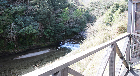 世屋川の画像